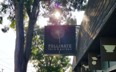 Pollinate Farm & Garden Supply is Homestead Heaven